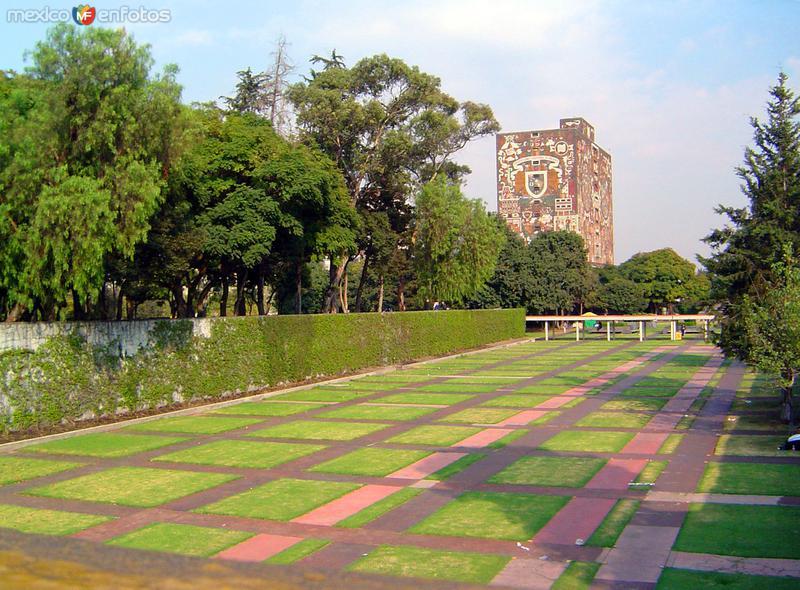 Jardines de la Ciuidad Universitaria
