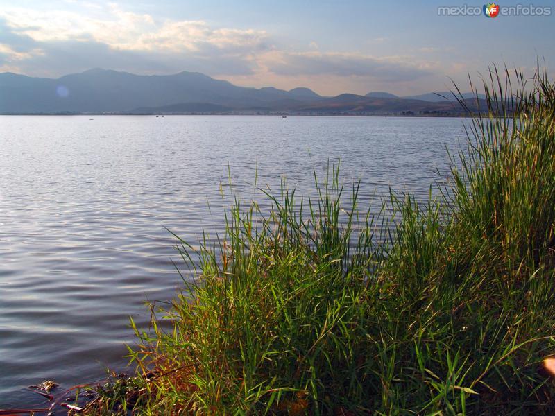 Fotos de Ciudad Guzmán, Jalisco, México: Laguna Zapotlán