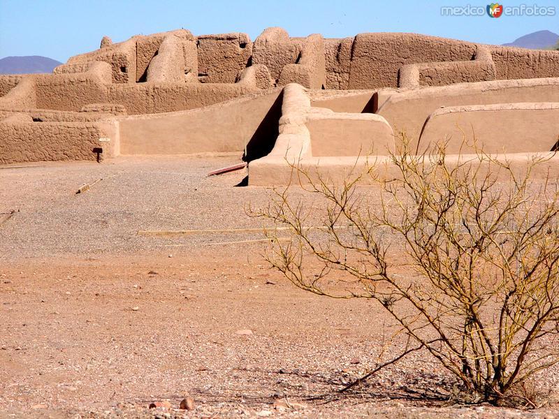 Fotos de Casas Grandes, Chihuahua, M�xico: Zona Arqueol�gica de Paquim�