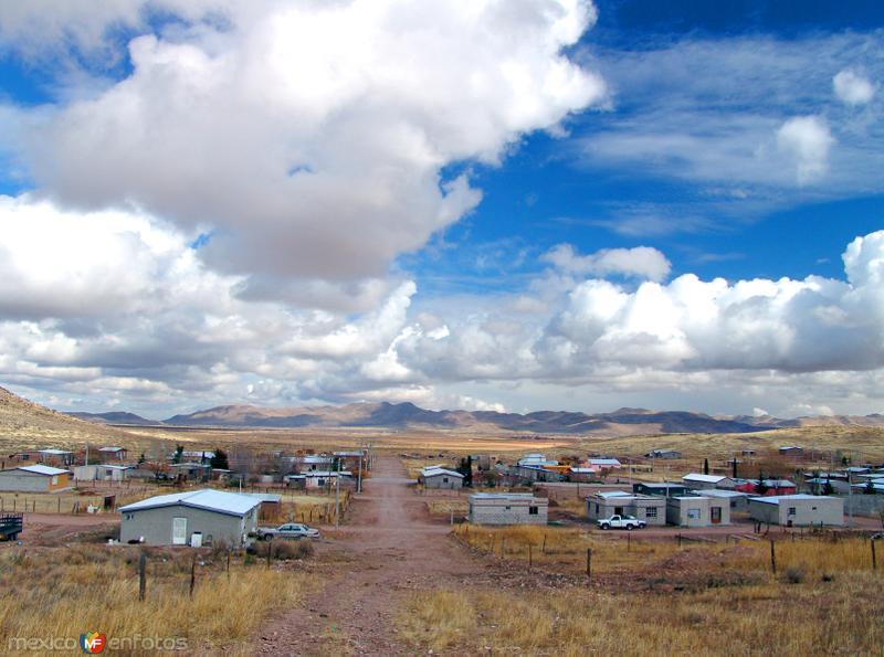 Fotos de Janos, Chihuahua, M�xico: Vista panor�mica de Janos