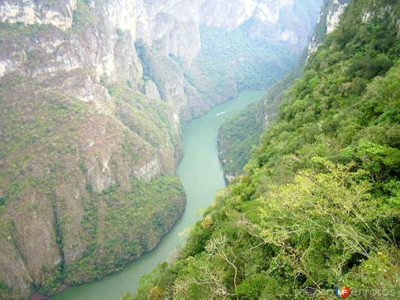 Fotos de Ca��n del Sumidero, Chiapas, M�xico: R�o Grijalva