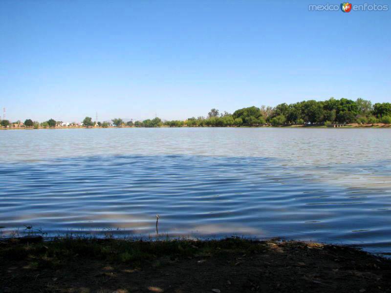 Fotos de Ciudad Obreg�n, Sonora, M�xico: Laguna del N�inari