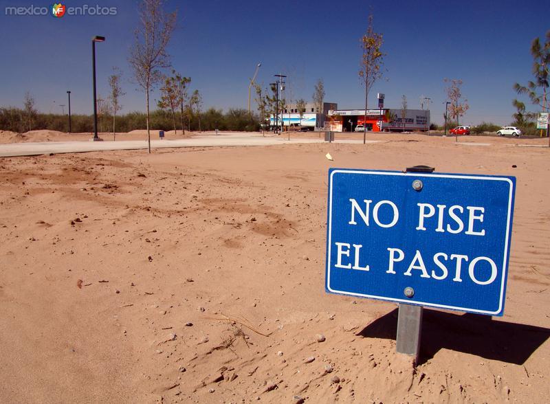Fotos de Torre�n, Coahuila, M�xico: Sin palabras