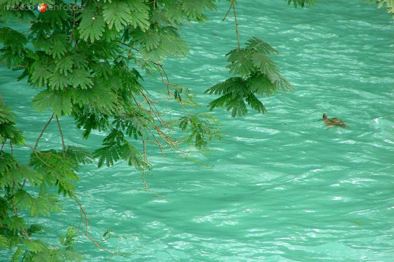 Río El Naranjo