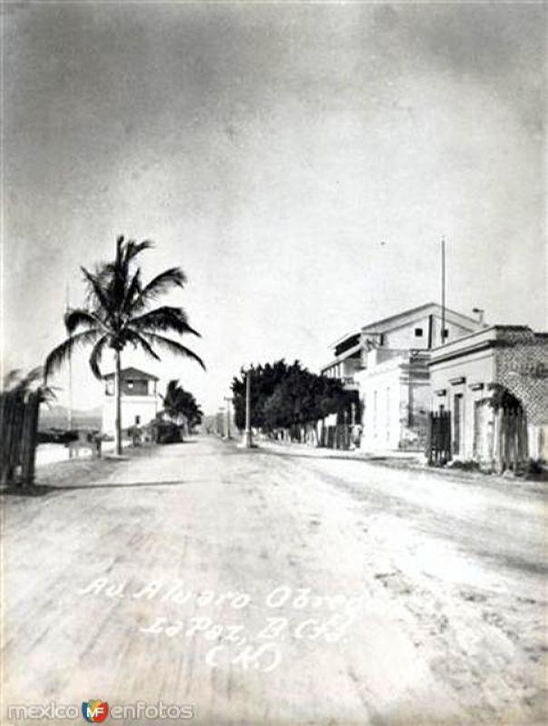 Ave. Álvaro Obregón