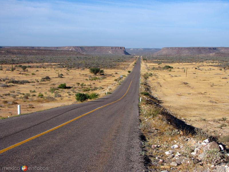 Fotos de La Pur�sima, Baja California Sur, M�xico: Carretera a La Pur�sima