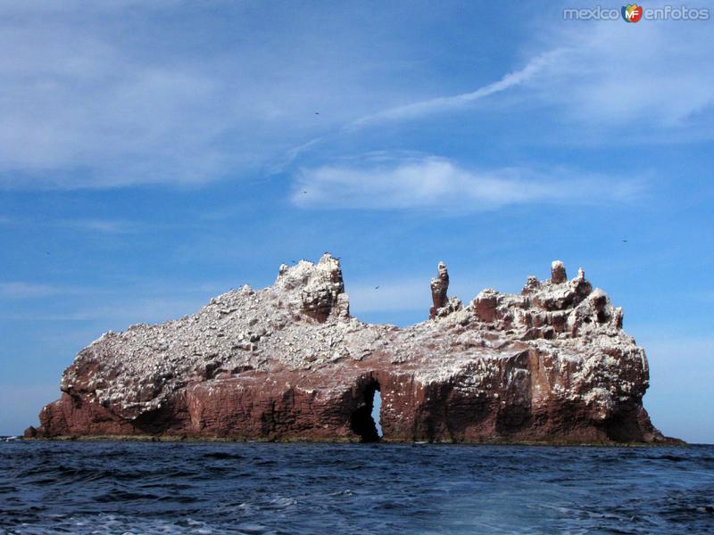 Fotos de Isla Esp�ritu Santo, Baja California Sur, M�xico: Los Islotes