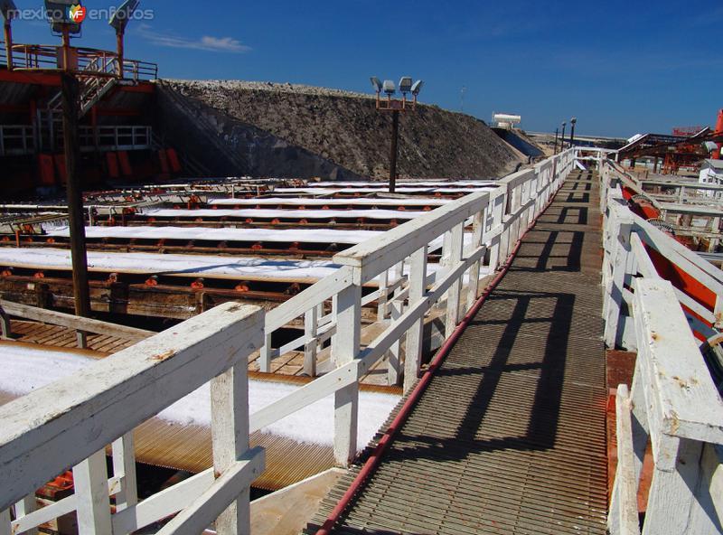 Salinas: Lavado y procesamiento de sal