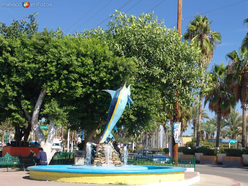 Fotos de Cabo San Lucas, Baja California Sur, México: Escultura de pez marlín