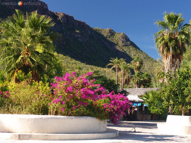 Fotos de San Javier, Baja California Sur, México: Calles de San Javier