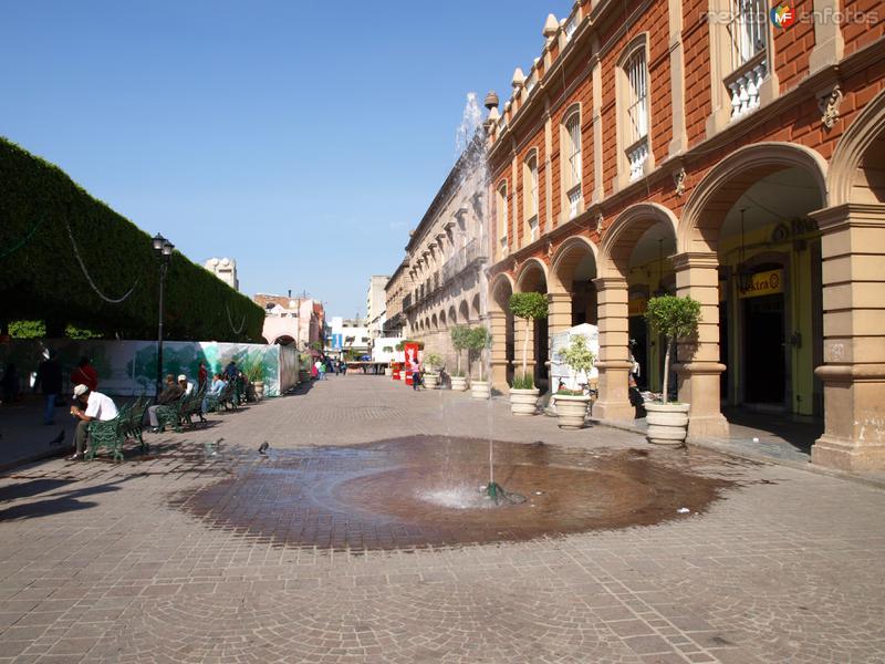 Fotos de Celaya, Guanajuato, M�xico: fuente en el jardin