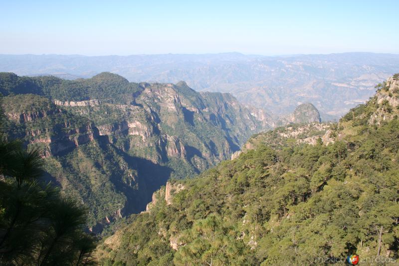 Desde la Sierra Madre Occidental