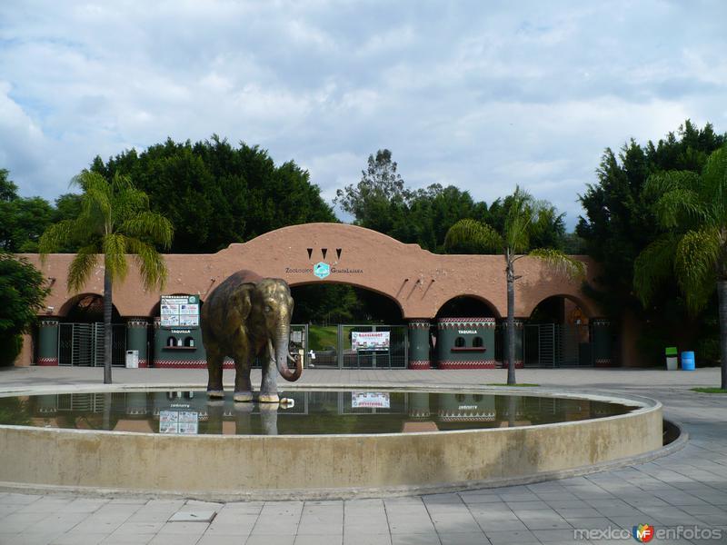 Zoologico de Guadalaja