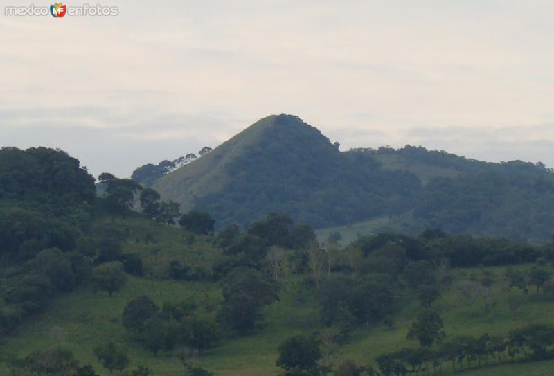 Fotos de Chinampa de Gorostiza, Veracruz, M�xico: Cerro borracho icono del lugar
