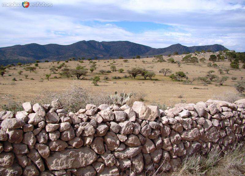 Cerros. Llegando al puerto de El Ranchito desde Zaragoza