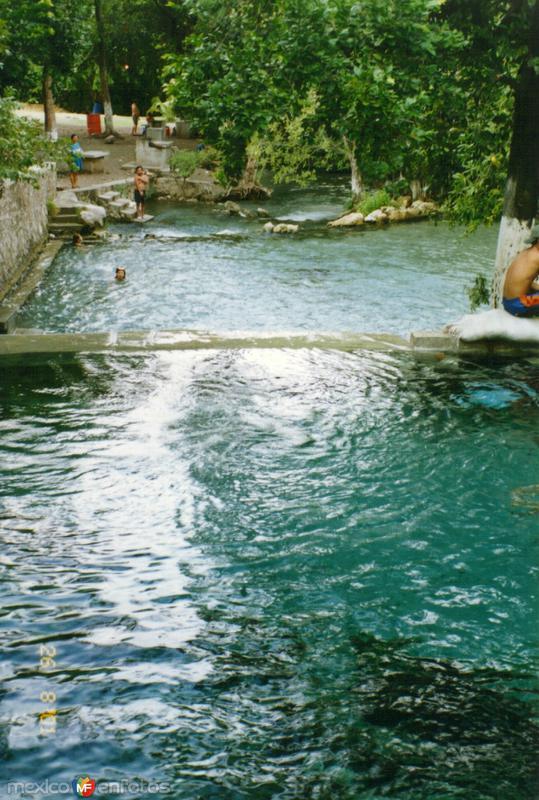 """Manatial de aguas termales """"Las Huertas"""". Estado de Morelos"""
