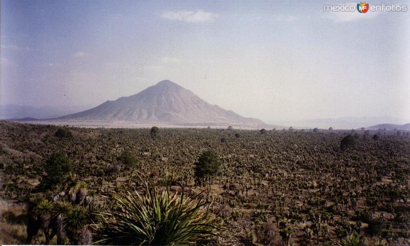 Zona de origen volcánico en los alrededores de Tepeyahualco, Puebla