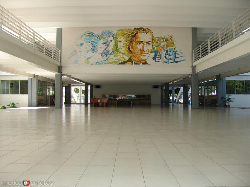 Fotos de M�rida, Yucat�n, M�xico: Centro Universitario Montejo (CUM)