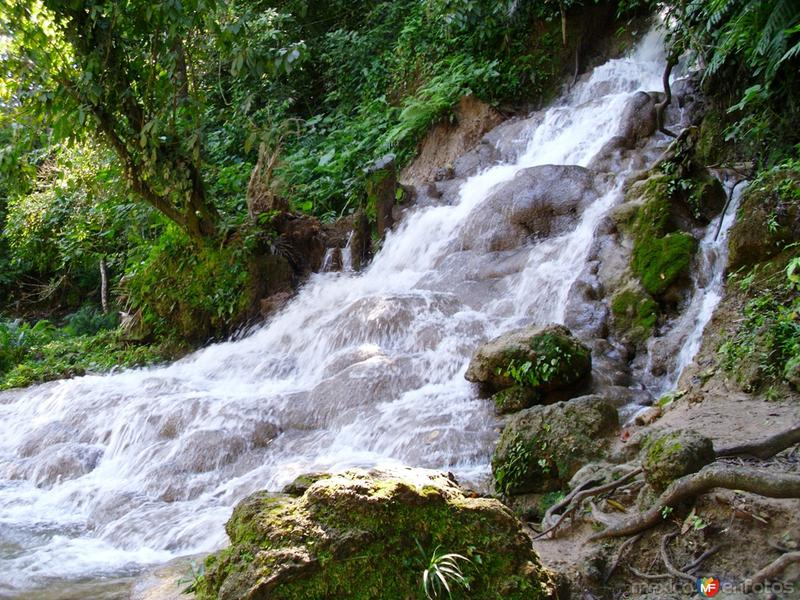 Fotos de Palenque, Chiapas, M�xico: CASCADA DE WELIB HA  CHIAPAS   MAVIPOL