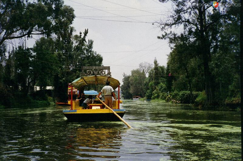 Canales de Xochimilco, DF. 1994