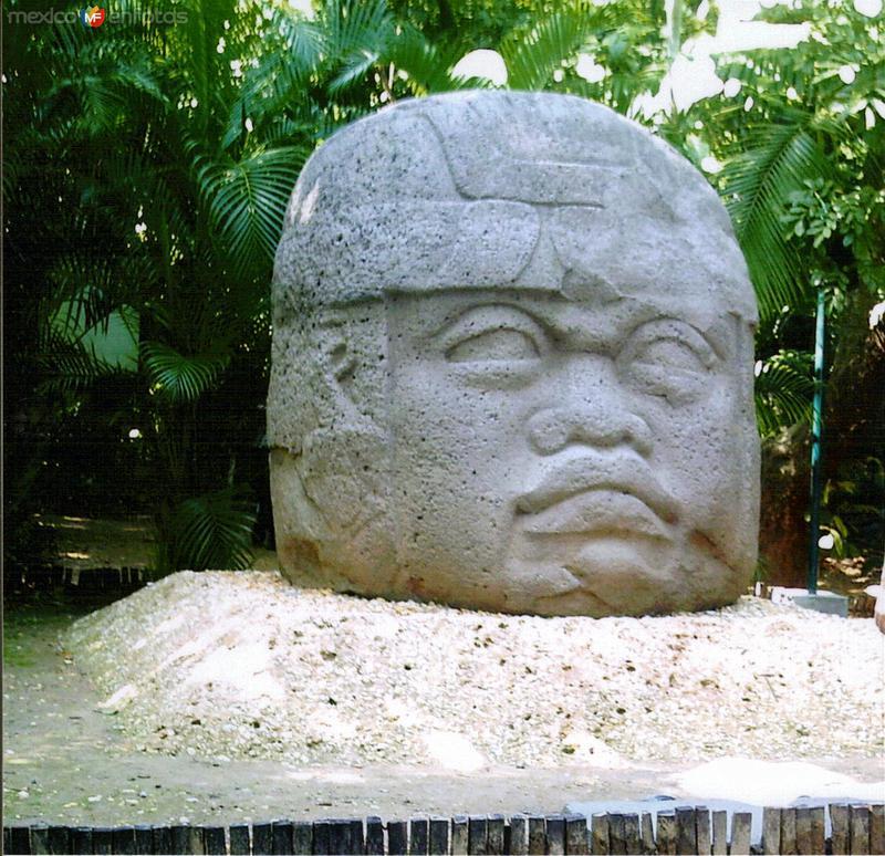 Cabeza Olmeca. Museo La Venta. 2005