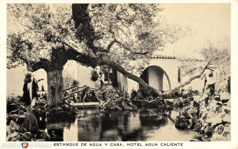 estanque de agua y casa hotel agua caliente tijuana