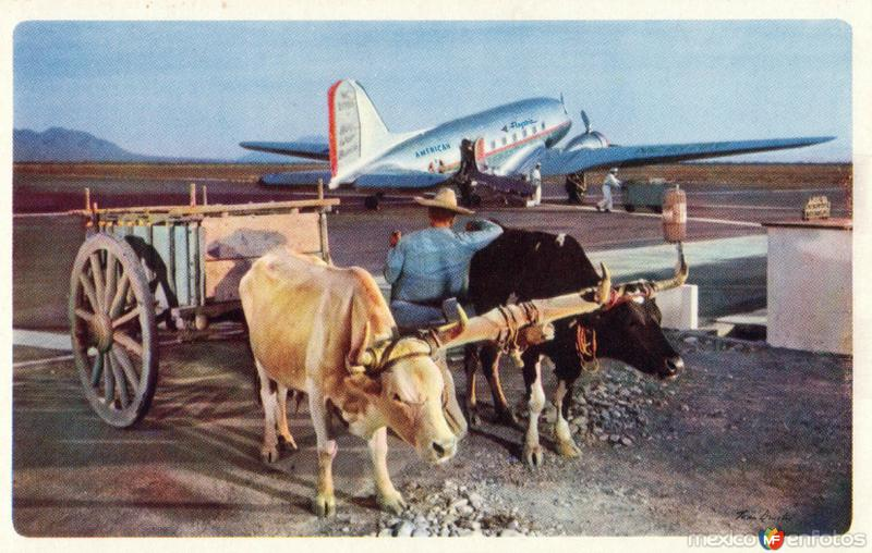 Carreta de bueyes y avión de American Airlines