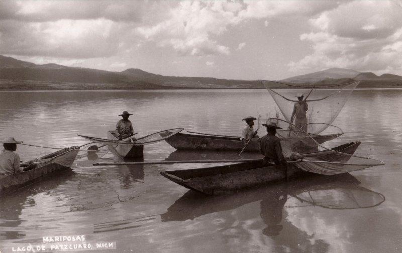 Mariposas en el Lago de Pátzcuaro