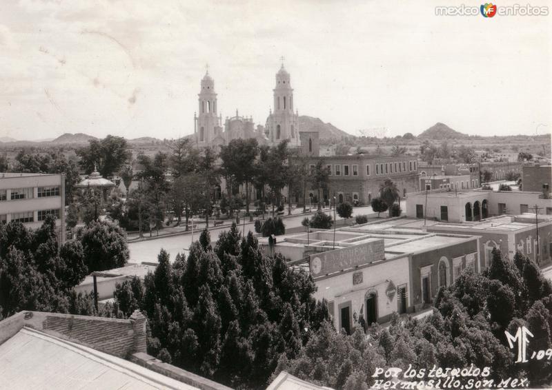 Fotos de Hermosillo, Sonora, M�xico: Por los tejados