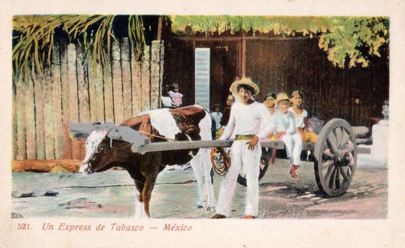 Fotos de Villahermosa, Tabasco, M�xico: Una carreta en Tabasco