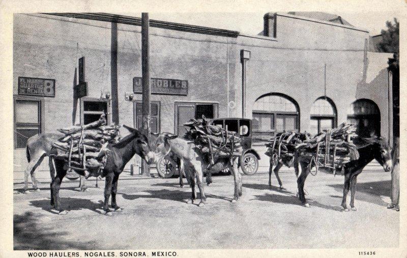 Fotos de Nogales, Sonora, M�xico: Cargadores de le�a