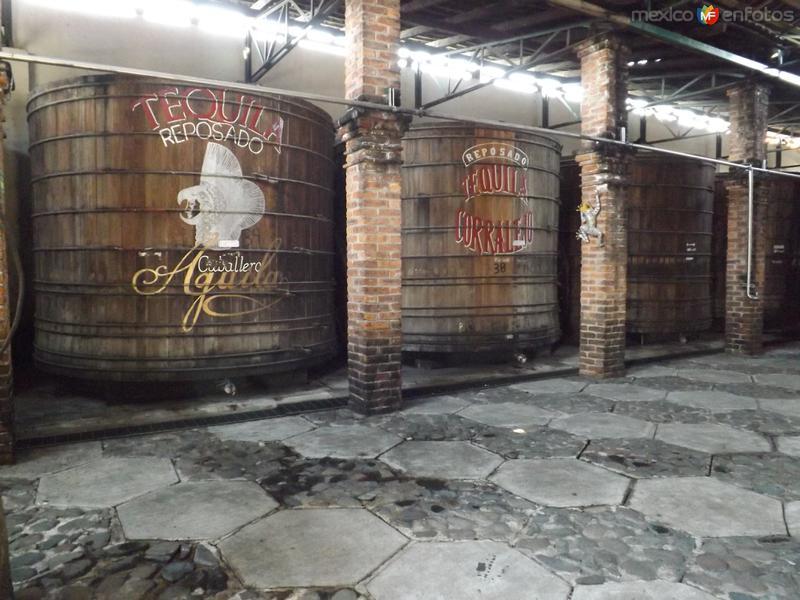 Barriles de roble blanco para el reposo del Tequila. Ex-hacienda Corralejo. Noviembre/2012