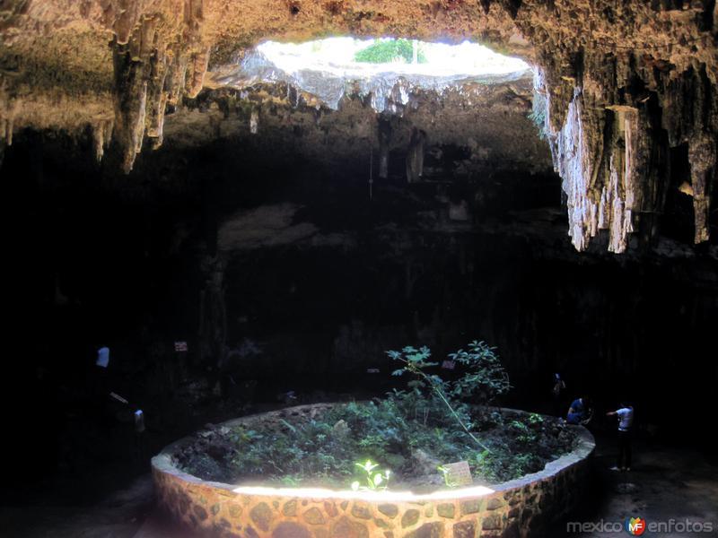 Fotos de Hom�n, Yucat�n, M�xico: Cenote Tz� Uj�n Kat