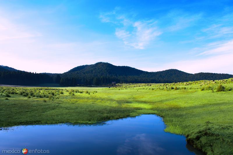 NATURALEZA: Llanos de Teopan, a un costado de la Carretera Federal 119, Chignahuapan - Tlaxco