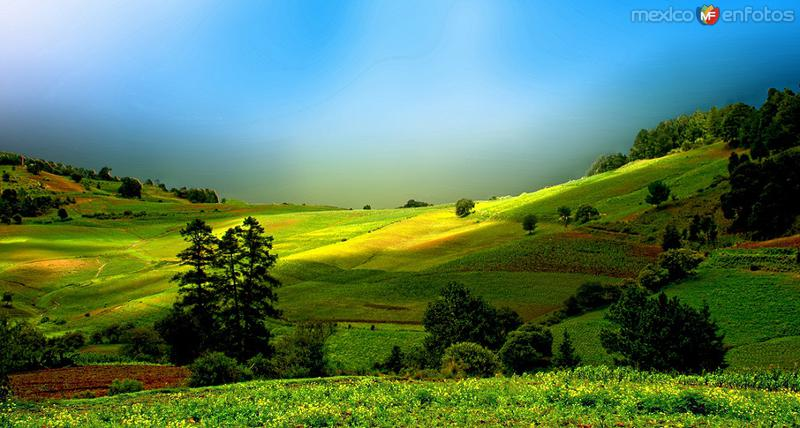 NATURALEZA: Paisaje Rural