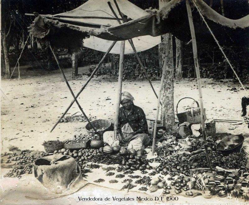 Vendedora de Frutas en el Pedregal de San Angel