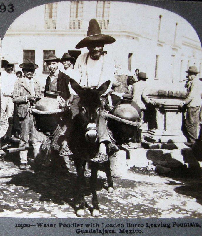 Tipico Aguador Hacia 1900