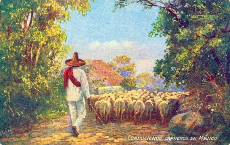 Conduciendo carneros