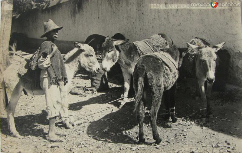 Fotos de Zimap�n, Hidalgo, M�xico: Arriero Hacia 1945