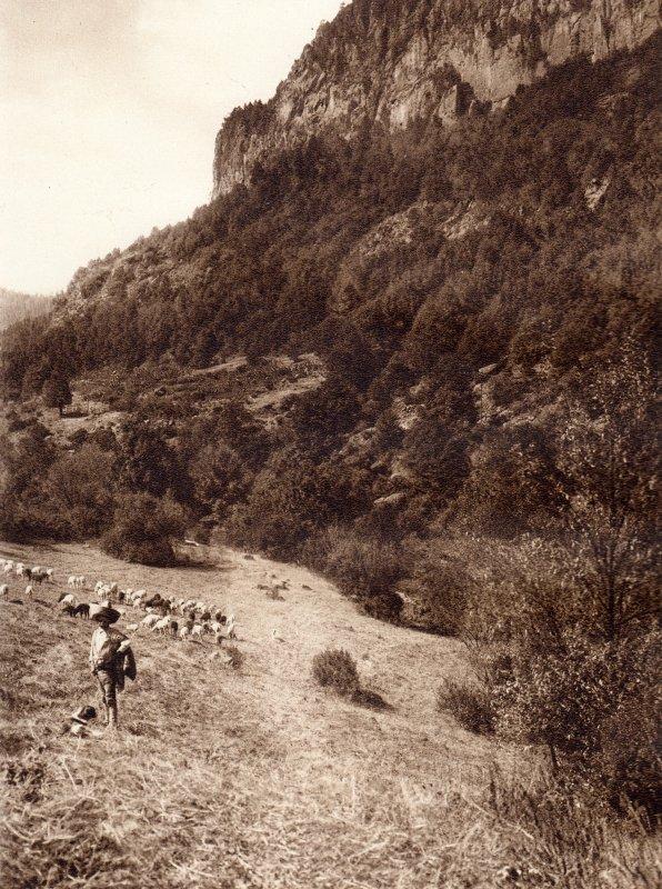 La Cañada, en la Delegación Contreras (circa 1920)