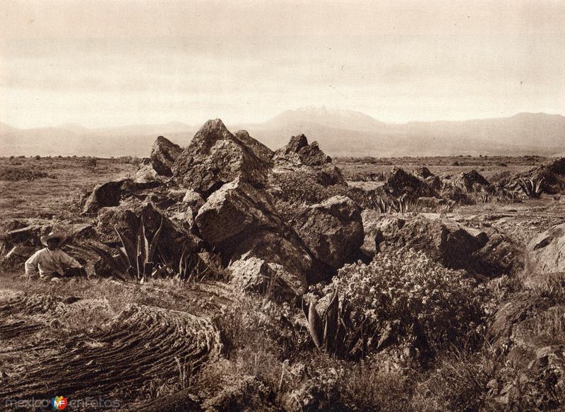 El Pedregal (circa 1920)