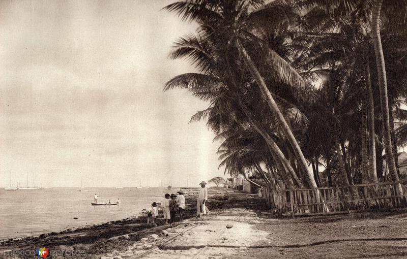 Costa de Campeche (circa 1920)