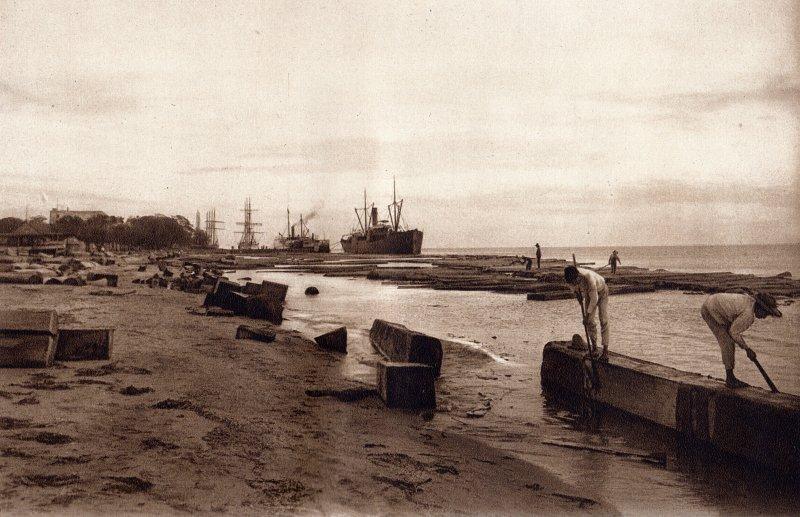 Laguna de Términos (circa 1920)