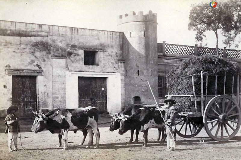 Fotos de , , M�xico: Alrededores de Hacia 1900