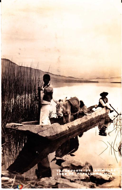 Transporte de Burros Hacia 1945
