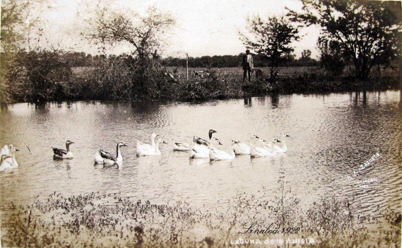 Laguna de la Aurora Hacia 1920