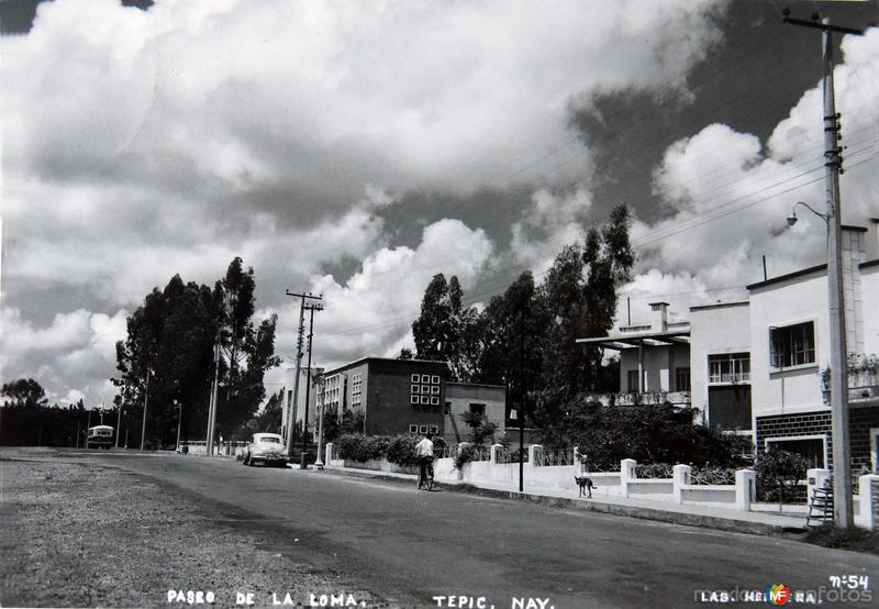 Fotos de Tepic, Nayarit, M�xico: Paseo de la Loma Hacia 1945
