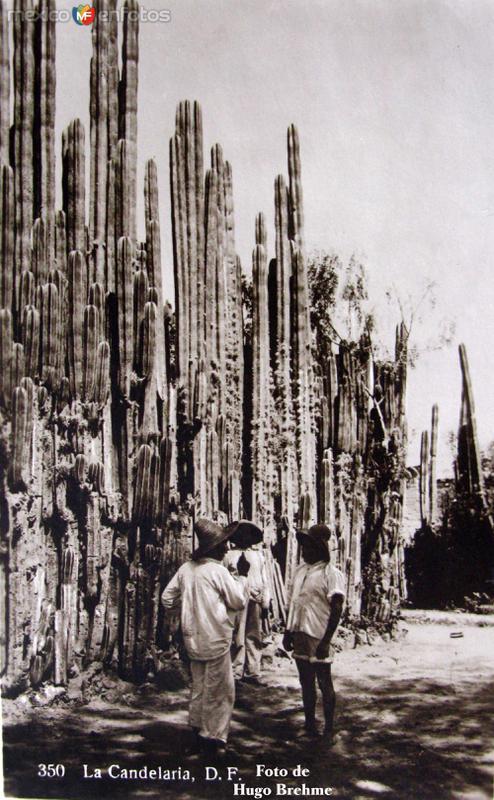 Barrio de La Candelaria por el fotografo HUGO BREHME Hacia 1930