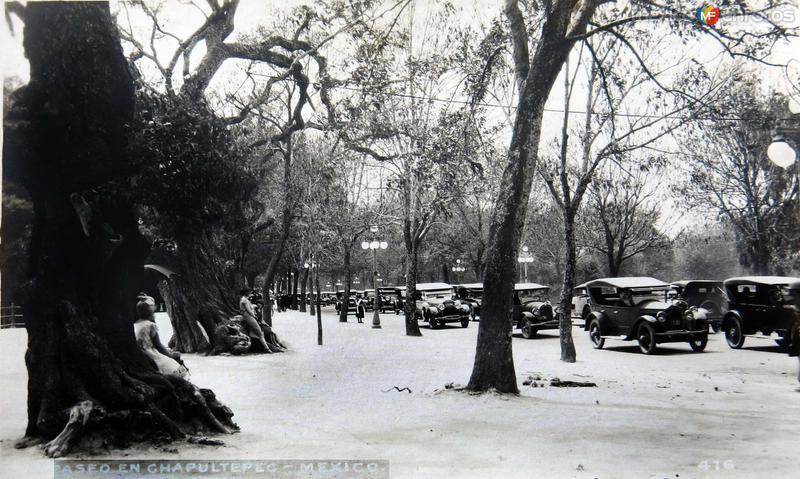 Paseo en Chapultepec Hacia 1930