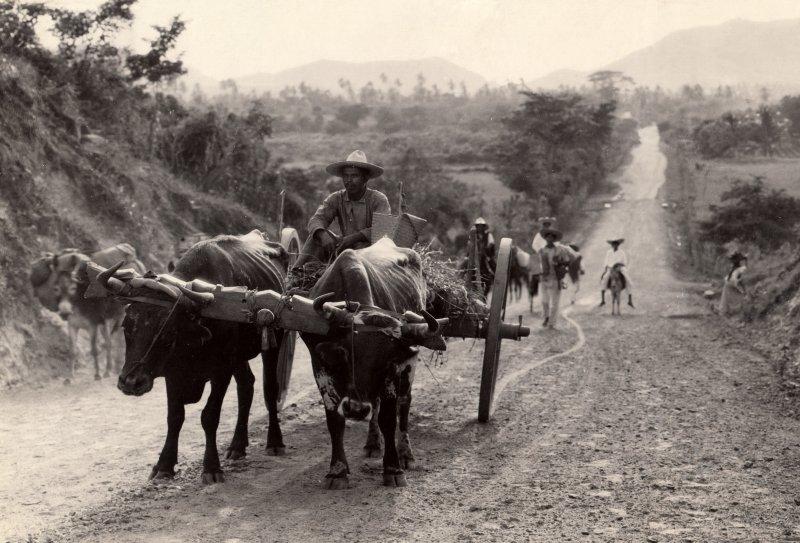 Fotos de , , M�xico: Carretera antigua en M�xico